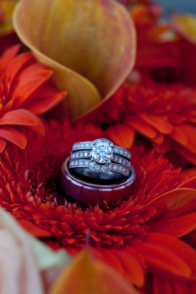 rin detail shot, rings, wedding rings, flowers, buy the bunch, wedding, photography