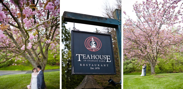 teahouse stanley park, cherry blossoms, wedding, teahouse wedding, stanley park wedding, spring wedding