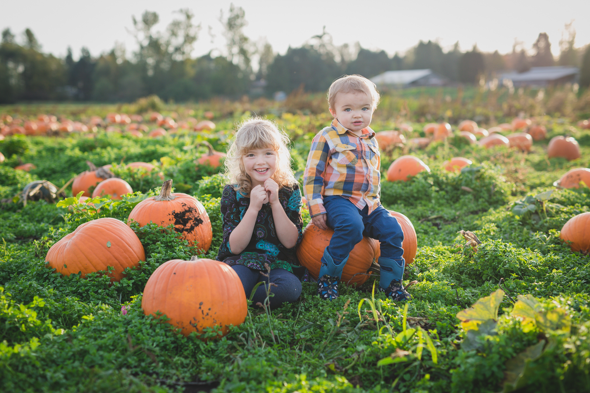 pumpkin patch family photo, pumpkin patch, family photography, fall, rondriso farms, cloverdale, fraser valler, wink photography, fraser valley family photographer