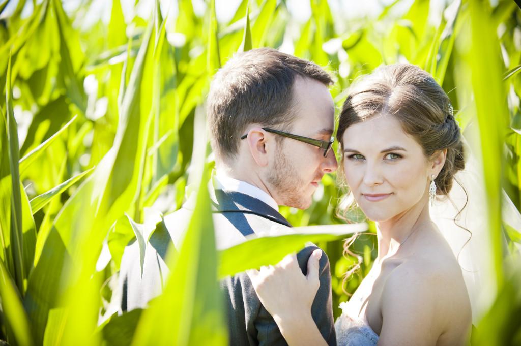 bride and groom portrait in corn field, chilliwack wedding