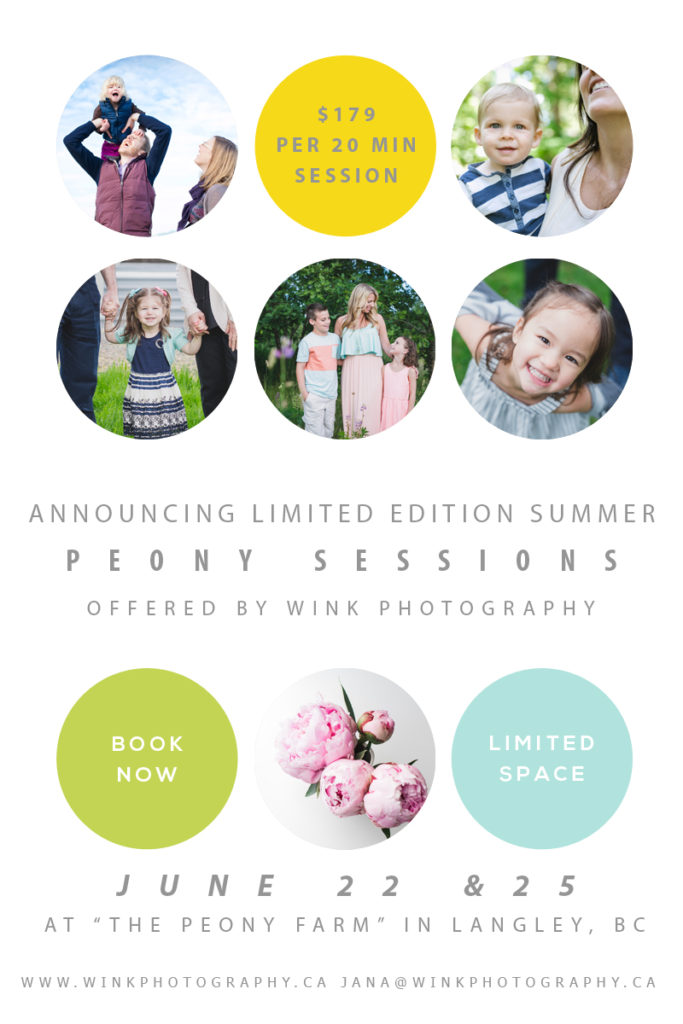 fraser valley family photographer mini sessions 2017, langley bc, fraser valley photographer